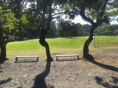School Yard, Liverpool, Costa Rica (JFGryphon) Tags: bench schoolyard hbm benchmonday january15th2016 liverpoolcostarica