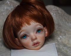 Larina head for adoption (olesyagavr) Tags: larina dimdoll