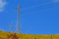 Pylone (Vincent Prdm) Tags: metal tension campagne arbre ligne pylone electrique metallique