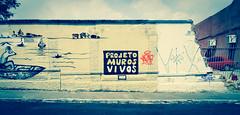 Projeto Muros Vivos