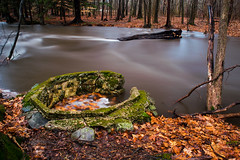 Kakiat after the Storm (cosmoguy1) Tags: park old mist storm color fall wet water leaves rain misty fog river lens moving nikon angle mud wide foggy well kit muddy rockland kakiat monsey d5300