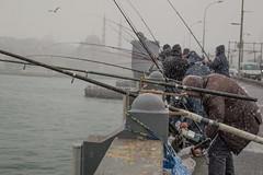 DSC_1661 (zeynepcos) Tags: bridge winter snow man cold fishing fisherman outdoor istanbul mosque galata karakoy eminonu