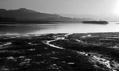 Marismas (Jaime Martin Fotografia) Tags: bw nature monocromo asturias rodiles marismas