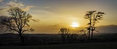 Sunset Over Criffel (TrotterFechan) Tags: sunset criffel ecclefechan