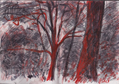 No3 The Red Notebook (Martin Beek) Tags: sketchbook drawing art study line 20122016 notebook notes 201216 nature