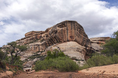 Varnished, naturally (Jeff Mitton) Tags: utah canyon coloradoplateau naturalbridgesnationalmonument redrockcountry desertvarnish wondersofnature earthnaturelife