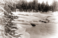 Winter Stream (beelzebub2011) Tags: bw snow canada mountains monochrome vancouver britishcolumbia snowshoeing hdr seymourmountain highdynamicresolution