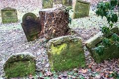 Grabstätten in der Nähe des Heiligen Meir von Rothenburg (S. Ruehlow) Tags: friedhof cemetery graveyard judentum jewish worms jewishcemetery rheinlandpfalz jüdisch מצבה jüdischerfriedhof heiligersand mazewa