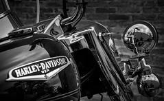 Harley-Davidson Universe (marcelo.guerra.fotos) Tags: light blackandwhite bw blancoynegro bike contrast noiretblanc harley harleydavidson motorcycle motor hd