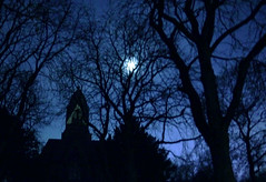 night at the graveyard (FotoTrenz NRW) Tags: blue trees friedhof moon graveyard night dark gloomy nacht cemetary midnight duisburg somber obscure mitternacht