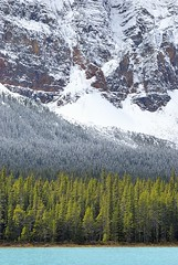 Canada, 4 Seasons in one... (Vittorio Ricci (THANKS+++2.1 MILLIONS VIEWS)) Tags: canadianrockies canadianrockymountains