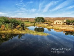 Tranquility (Dreamcatcher photos) Tags: reflection tree water river southafrica clanwilliam khoisan dreamcatcherphotos sevilletrail