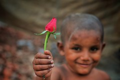 Happiness (walidhasan412) Tags: street portrait flower smile rose canon photography photographer child ngc streetphotography 1855mm smileyface flickrphoto portraitphotography beautifulface flickrestrellas flickrdaily canon1200d