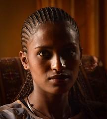 Aklil (Rod Waddington) Tags: africa portrait woman female african indoor afrika ethiopia ethnic afrique ethiopian etiopia ethiopie tigray adigrat