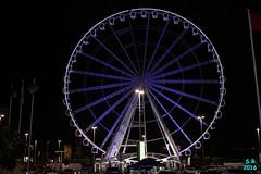 Abu Dhabi Februar 2016  210 (Fruehlingsstern) Tags: abudhabi marinamall ferrariworld canoneos750 scheichzayidmoschee