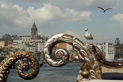 View from Eminn (turinhurinov) Tags: tower boat seagull 58mm helios galata eminonu