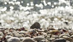 20160313-IMGP8667 (austinharding842) Tags: ocean beach rocks pentax zoom massachusetts pebbles cape cod 60250