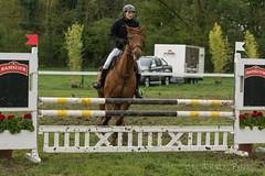 DSC09463_s (AndiP66) Tags: gelb martinameyer grueb wolhusen luzern springen hindelbank jegensdorf 2016 23april2016 pferd horse schweiz switzerland kantonbern cantonberne concours wettbewerb horsejumping equestrian sports springreiten pferdespringen pferdesport sport sony sonyalpha 77markii 77ii 77m2 a77ii alpha ilca77m2 slta77ii sony70400mm f456 sony70400mmf456gssmii sal70400g2 andreaspeters jegenstorf bern ch