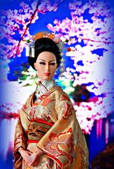 Geisha  (Kim ) Tags: cherry tokyo miniature costume blossoms geiko geisha kimono friday hairstyle comb memoirs japanes  kanzashi kushi sybarite   geigi birabira kimlondon