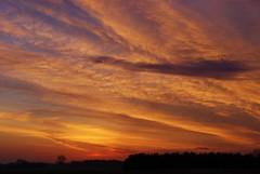 DSC01354 (alexrupp426) Tags: morning sky orange cloud sun clouds rural sunrise dawn outdoor