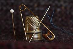 needless to say (notpushkin) Tags: thimble needle fingerhut nadel oneofthesethings macromonday
