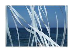 Beach Breeze 2015 DSCF9897 (roger-evans) Tags: blue beach crete breeze stalis