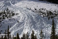 Avalanche (SteveD.) Tags: britishcolumbia alberta banff jaspernationalpark banffnationalpark avalanche canadianrockies icefieldparkway stevedunleavy2015