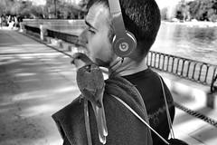 image (Luis Iturmendi) Tags: madrid street people blackandwhite bw bird blancoynegro monochrome monocromo calle streetphotography parrot mascot cotorra
