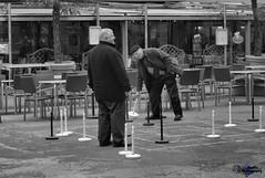 aged men playing (zbma Martin Photography) Tags: street old white playing black game men schweiz streetphotography bern bundeshaus weiss schwarz spiel mnner spielen alte strassen strassenfotografie ltere