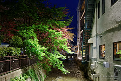 20160412-90-Kyoto at night (Roger T Wong) Tags: travel trees light holiday japan night kyoto canonef1740mmf4lusm 2016 canon1740f4l canoneos6d rogertwong