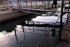 Muddy Waters (dvolic) Tags: reflection river crossing danube dunav reka splav