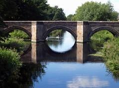 Market Deeping bridge 510 011 (saxonfenken) Tags: reflection framed swans gamewinner 6916 marketdeeping challengeyou friendlychallenges thechallengefactory pregamechallenges 6916bridge