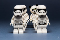 The First Order is not a zoo (#5) (Ballou34) Tags: bear canon toy toys photography eos rebel star starwars panda flickr order force lego stuck stormtroopers first plastic stormtrooper wars afol 2015 minifigures toyphotography 650d t4i eos650d legography rebelt4i legographer stuckinplastic ballou34