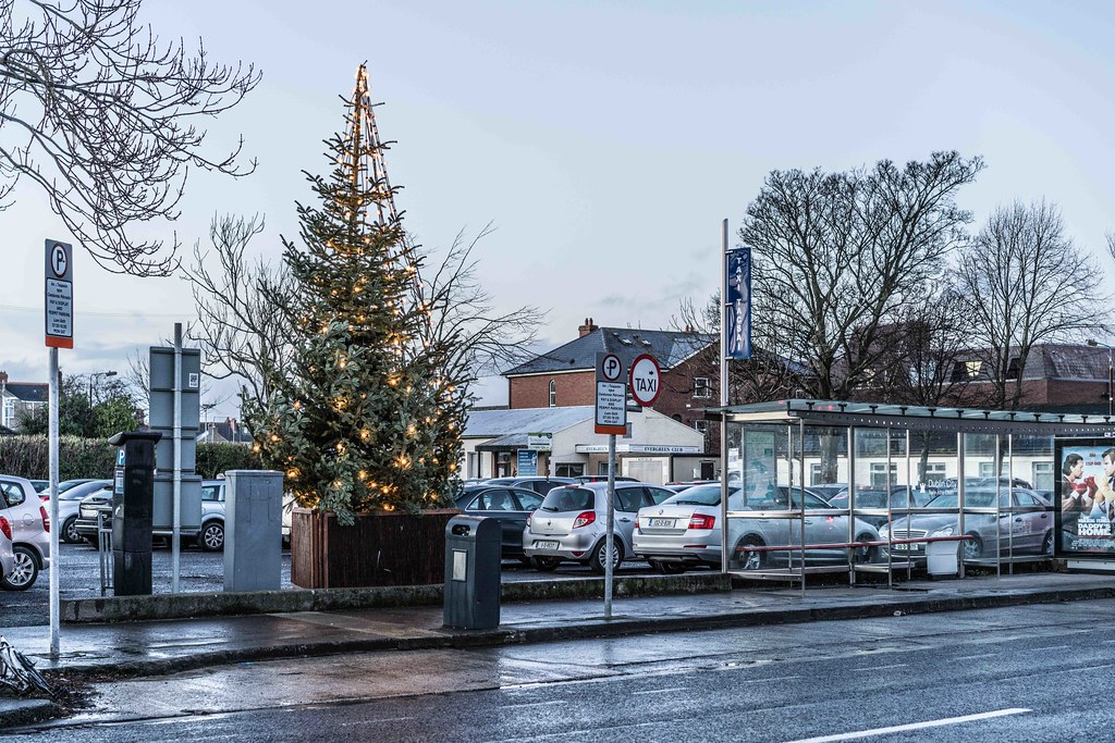 CHRISTMAS EVE IN TERENURE [2015]-110710