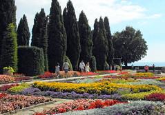 The botanical garden in Balchik / Bulgaria (Stella VM) Tags: flowers beautiful garden botanical bulgaria blacksea balchik