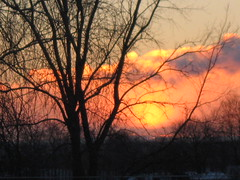 lev du soleil (Boriton42) Tags: soleil