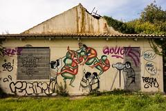 RX100-6093 (danguerin75) Tags: graffiti larochelle rx100