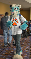 DSC_0544 (Acrufox) Tags: midwest furfest 2014 furry convention december hyatt regency ohare rosemont chicago illinois acrufox fursuit fursuiting mff2014