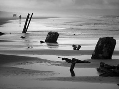 Oregon beach (sparth) Tags: blackandwhite bw france reflection beach fog oregon blackwhite or brouillard sparth