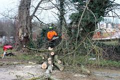 George Walker Tree Care Ltd  cleared up  Lands End Way Oakham Closed storm damaged trees (@oakhamuk) Tags: trees storm up closed rutland damaged oakham cleared martinbrookes rutlandcountycouncil landsendway georgewalkertreecareltd