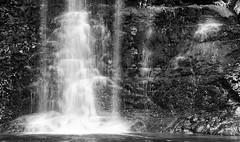 shades of white (keith midson) Tags: cliff water waterfall falls tasmania russellfalls