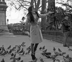 La fte des pigeons (Martial Soula) Tags: paris mamiya film kodak tmax pigeon femme notredame argentique tmax100 mamiyarb67 middleformat sekor moyenformat sekor127mm sekor65mm