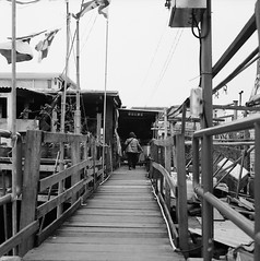 Alley on the Sea (Purple Field) Tags: china street sea bw 120 6x6 tlr film monochrome analog rolleiflex zeiss walking square hongkong alley village kodak tmax iso400 carl medium      f28 planar  80mm    28c         canoscan8800f   stphotographia