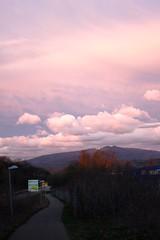 Freiburg in the setting sun V (tillwe) Tags: pink sunset sky clouds landscape freiburg blackforest tillwe kandel 201603
