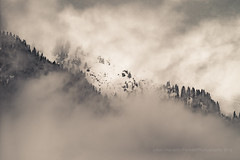 Hanging in the void - 20160226 Wind, snow, light DSCF1106.jpg (PowderPhotography) Tags: old trees blackandwhite bw snow mountains forest lens skiing pines cablecar manual jupiter peaks russian treeline chamonix 135mm f40 brevent 2016 m39
