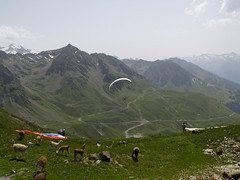Pireneje 2010 - Bigorre Arbizon