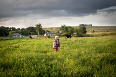 IMG_8868 (alexey.safonkin) Tags: field grass countryside cow child
