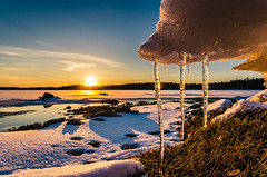 Spring is just around the corner (Konalley) Tags: sunset seascape cold sunrise finland frozen spring wideangle talvi icicles beatiful maisema winterlandscape auringonlasku jpuikot nikond7000 nikkor1024mmf3545ged