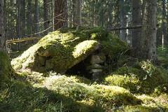 Trollstugan (tusenord) Tags: forest low hut skog troll grotta mossa naturreservat finspång lågt fotosondag trollgrotta kolkoja fs160403 gamlareservatet hällestadtorp