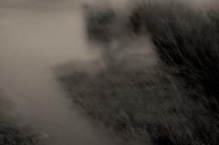 powlett river estuary v (Kenneth Rowe) Tags: bw monochrome icm multipleexposures powlettriver d7000